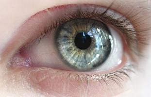 Sa�de dos olhos