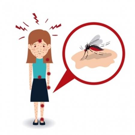 Saiba mais sobre chikungunya, zika v�rus, dengue e microcefalia