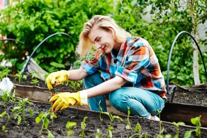 Estar envolvido com a produção é um estímulo para incluir mais hortaliças na alimentação
