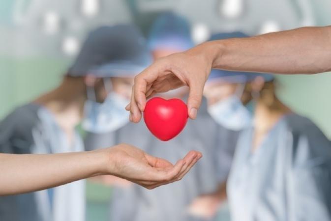 Doação de órgãos será tema de entrevista em rádio nesta terça-feira