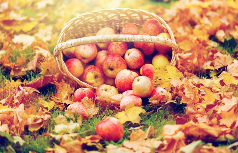 Saiba quais são as frutas típicas do outono e aproveite os benefícios