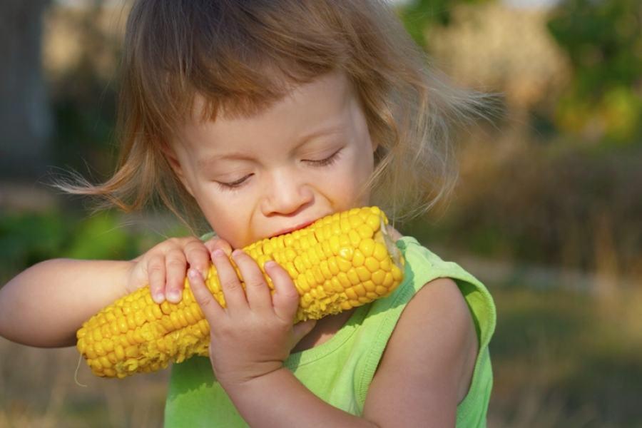 A criança deve cresçer em um ambiente saudável e consciente: bons hábitos alimentares